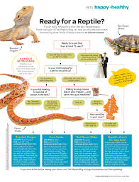 reptiles for kids