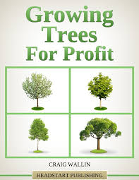 high value trees profitable plants digest