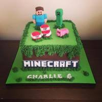 mine craft cakes birthday cakes in middlesbrough wedding cakes in stockton