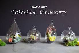 diy terrarium ornaments sunset