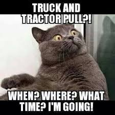 Say What Again Meme - kitty says truck n tractor pull who what when omg say what