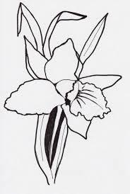 bleeding black rose drawing urldircom