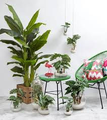 Tropical Decor 43 Best Déco Tropicale Images On Pinterest Tropical Interior
