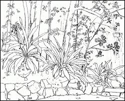 coloring pages adults nature amazing coloring pages adults