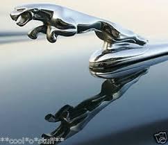a12 jaguar front leaper ornament logo monogram emblem badge