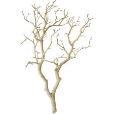 150 best manzanita tree centerpieces images on