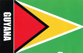 Green Yellow Red Flag World Come To My Home 1022 1472 Guyana The Map And The Flag