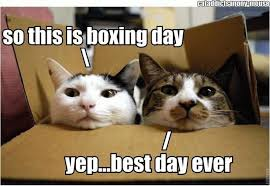 Day After Christmas Meme - everything you needed to know about boxing day mostly needlepoint