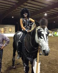 Halloween Costumes Kiss Hilarious Horse Halloween Costumes Craziest
