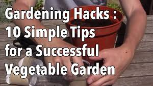 gardening hacks 10 simple tips for a successful vegetable garden