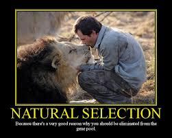 natural selection motivational poster by davinci41 on deviantart