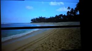 what u0027s picture differences projector screen vs white wall review