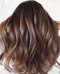 brondie hair 20 tiger eye hair ideas to hold onto balayage highlights