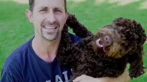 australian shepherd training tips australian dog training tips youtube