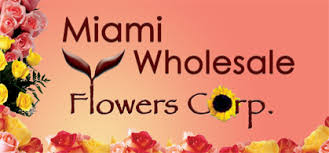wholesale flowers miami miami wholesale flowers roses fillers foliage pompons