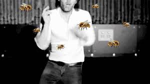 Thom Yorke Meme - thom yorke fighting off some bees gif on imgur