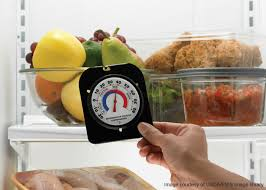 termometre cuisine use a refrigerator and a freezer thermometer unl food