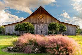 hearthstone introduces new custom barn collection