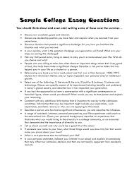 example application essay amitdhull co