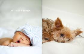 baby photography los angeles los angeles newborn baby portraits caroline los