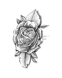 hand drawn vector illustration or drawing of a heart fire roses