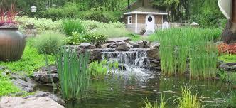 Aquascape Biofalls What Is A Biofalls Premier Ponds Dc Md Va Pond Contractor