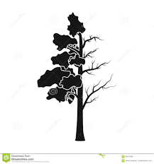 tree half of green leaf and half icon in black style