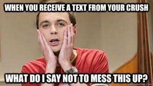 Funny Crush Memes - when you receive a text from your crush what do i say not to mess