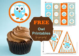Giggle And Hoot Decorations 26 Best Giggle And Hoot For Alice Images On Pinterest Birthday