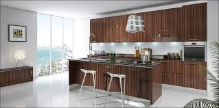 Glossy Kitchen Cabinets Kitchen High Gloss Kitchen Cabinets Doors White High Gloss