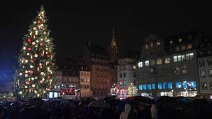 christmas trees and lights these are the world u0027s coolest christmas trees new york post
