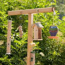 bird gardens how to attract beautiful wild birds into your