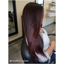 black hair to raspberry hair photos chocolate raspberry hair color women black hairstyle pics