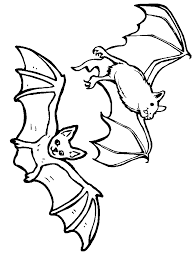 bats 10 animals coloring pages u0026 coloring book