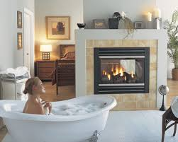 Regency Fireplace Inserts by Regency Fireplaces Product U0027s Brochures Manuals Guides Parts