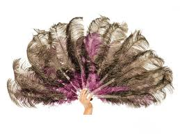 feather fan deluxe2 jpg v 1511264755