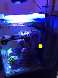 Floating Aquascape Reef2reef Saltwater And Reef Aquarium Forum - rocks touching back glass or not reef2reef saltwater and reef