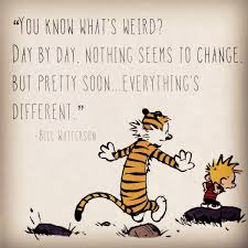calvin and hobbes quote of the day da you what s