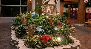 Indoor Plant Arrangements Living Plant Arrangements Add Life To Any Common Area Lyndale Plants