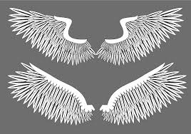 free wings vector graphics 123freevectors