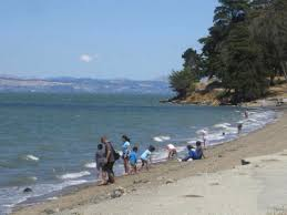 Lake Berryessa 7 Places To Swim During The Drought In Northern California