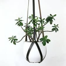 modern hanging planters modern hanging planter realvalladolid club
