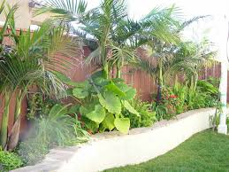 curvy retaining wall with tropical plants gardening and outdoor