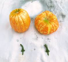 styrofoam pumpkins how to makeover dollar store pumpkins with a faux galvanized metal