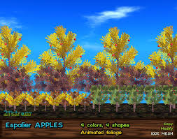 second marketplace espalier narrow trees with 3d apples