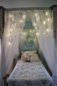 Bed Canopy With Lights Beautiful Bed Canopy Diy Vine Dine King Bed