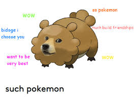 Doge Meme Best - wow bidoge i choose you want to be very best so pokemon much build