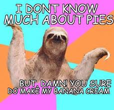 Make A Sloth Meme - haha sloth meme noobs pinterest sloth meme and sloth memes