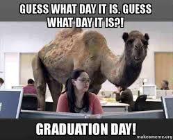 Graduation Meme - 20 witty graduation memes that ll make you feel extra proud love
