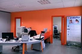 bureau administratif offices production and sale mattresses about us mollyflex srl